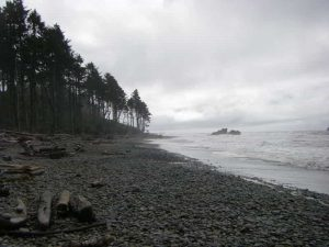 black water beach