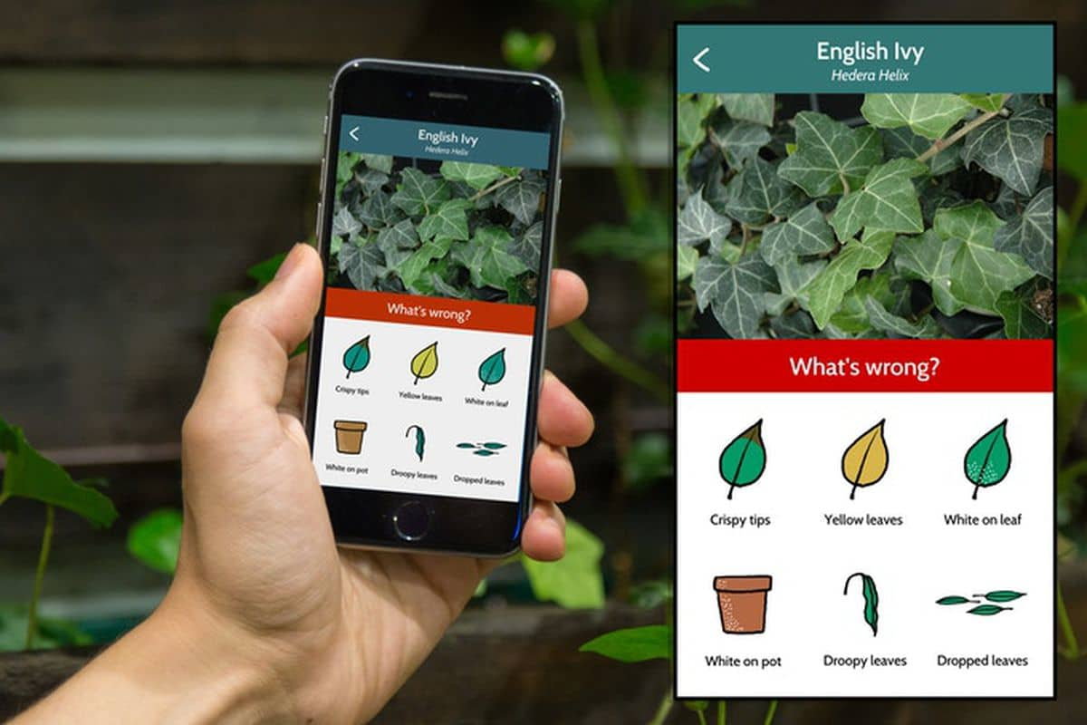 Gardening App for Android